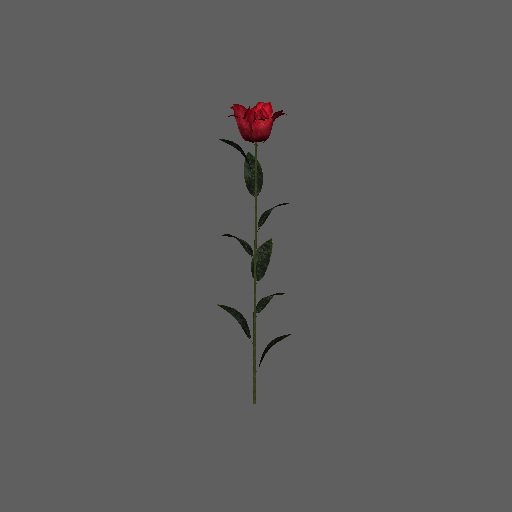 sp-rose-01