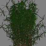 yvh-bamboo-scr1